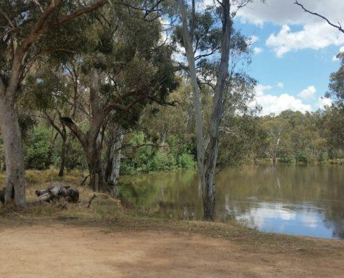 Goulburn river near by