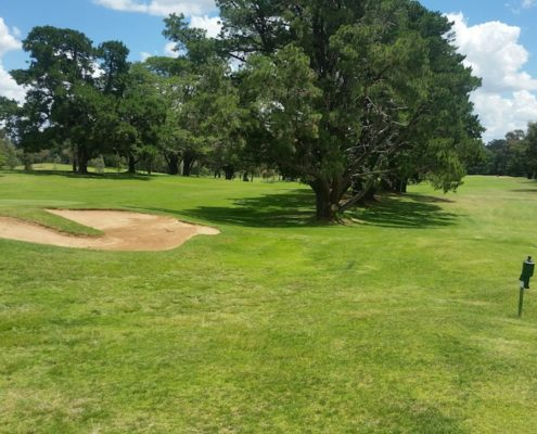 Shepparton golf course